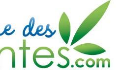 logo phytothérapie ruedesplantes