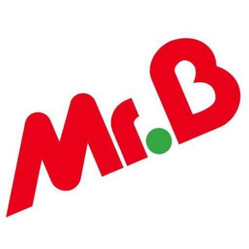 Logo Mr.Bricolage carré